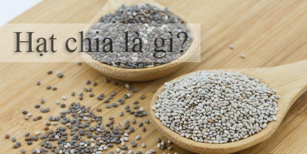 hạt chia là gì