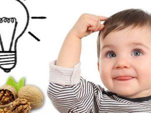 Hạt óc chó – Loại hạt tốt nhất cho bé yêu nhà bạn