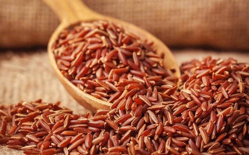 Chế biến sữa hạt dinh dưỡng từ gạo lứt